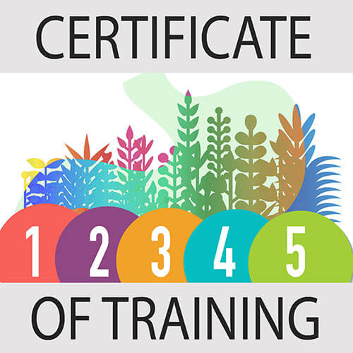 Certificate of Training logo